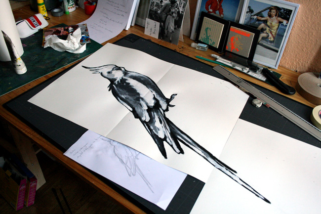 Esad croquis naturaliste perruche calopsitte valgal graphiste illustrateur freelance - Dessin calopsitte ...